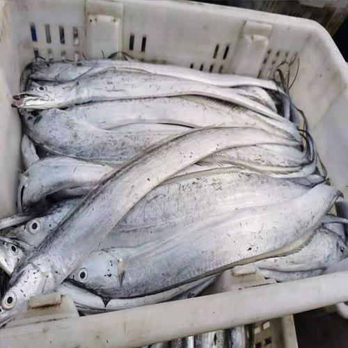 海鲜批发价格
