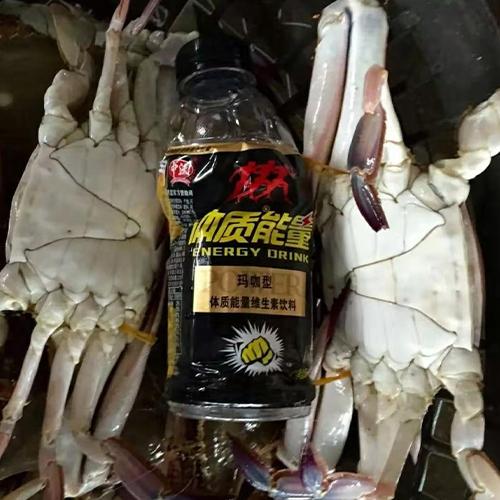 海鲜梭子蟹